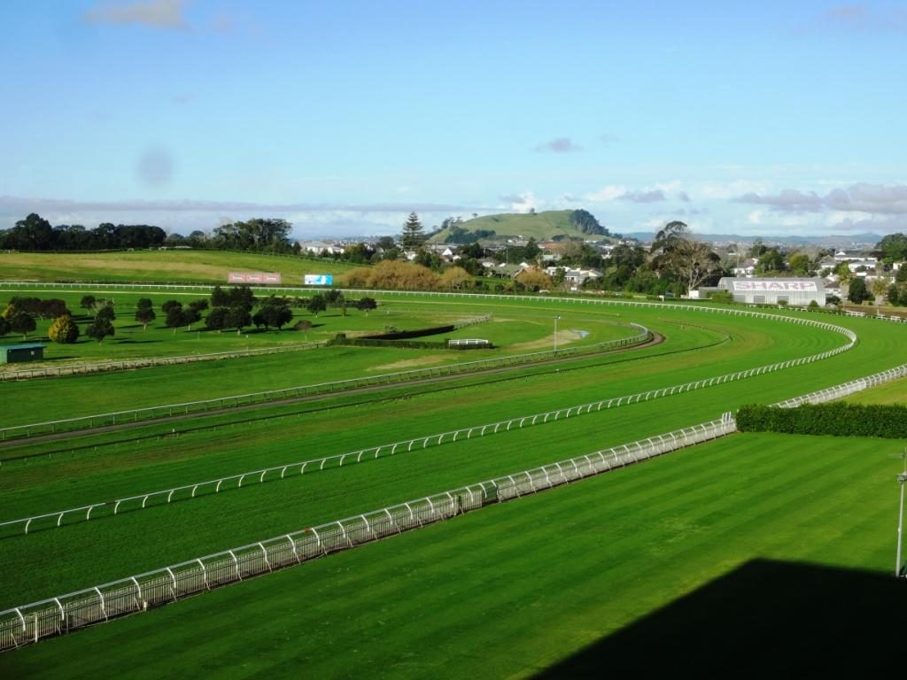 The Beauty of Food: Ellerslie Race Course
