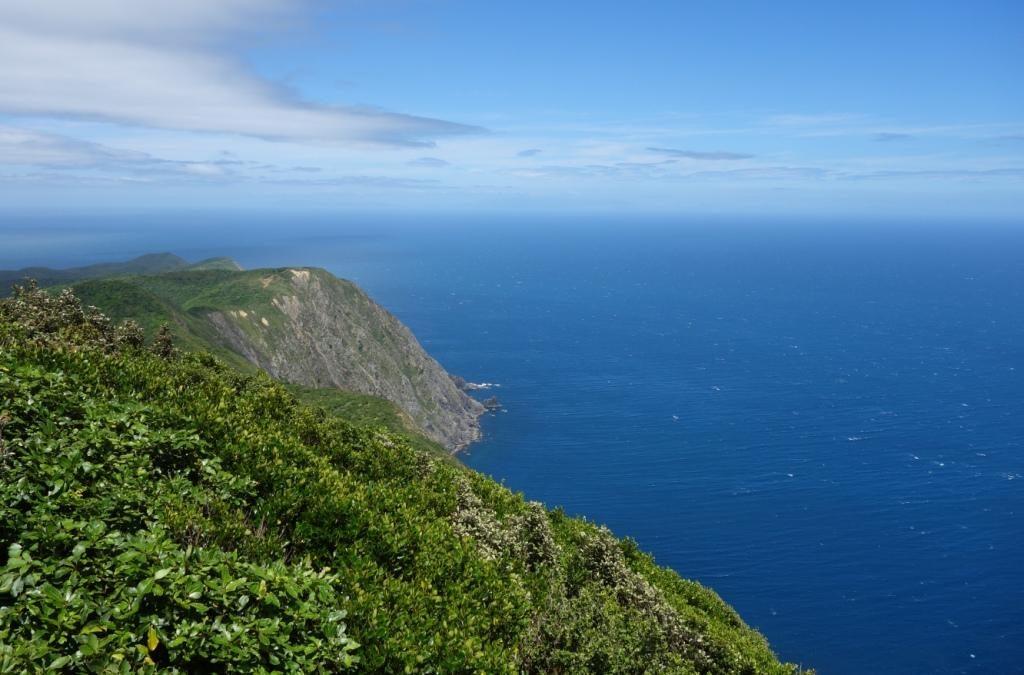 Kapiti Island - Blick vom Gipfel