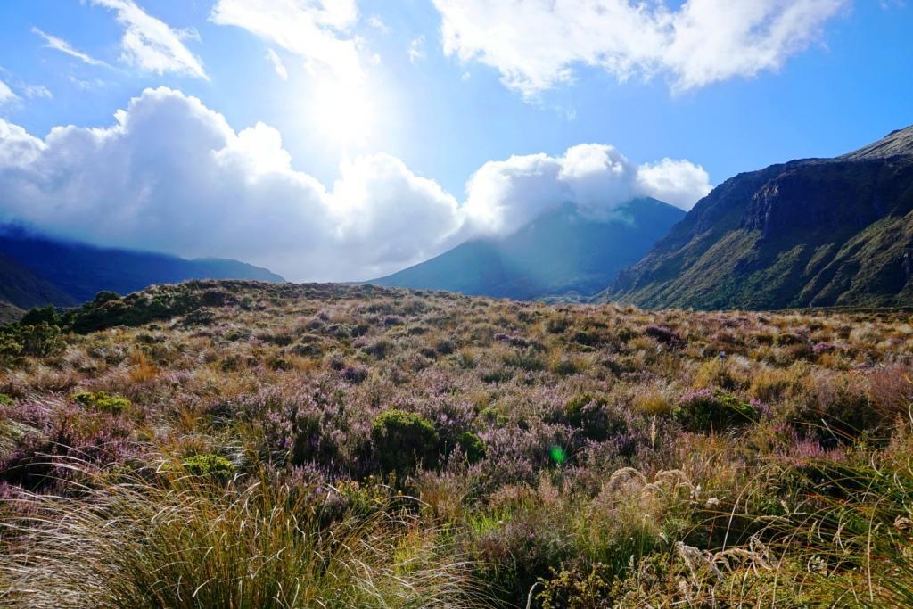 Tongariro Alpine Crossing - 20 Kilometer quer durch Mordor