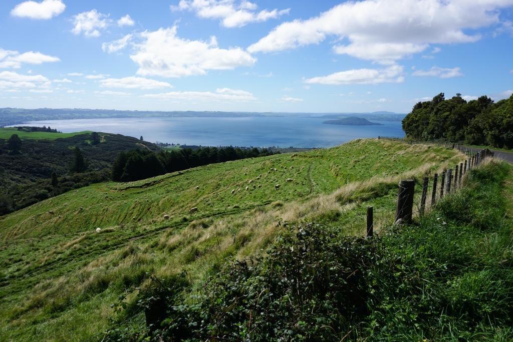 Rotorua - Blick vom Aorangi Peak auf den Lake Rotorua
