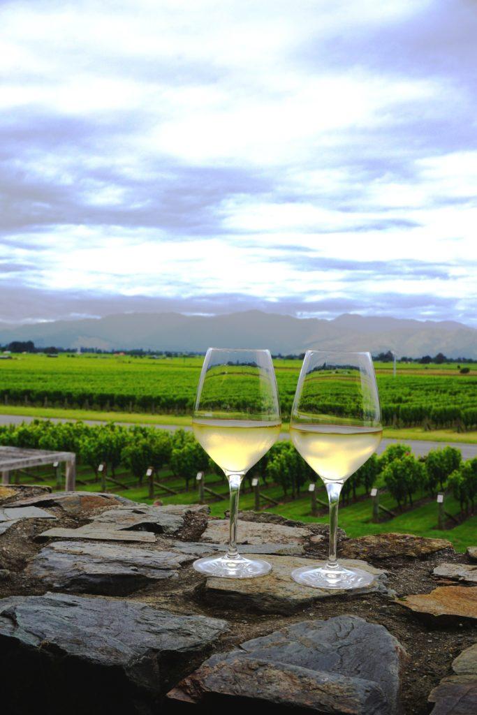 Weinanbau in Blenheim: Sauvignon Blanc