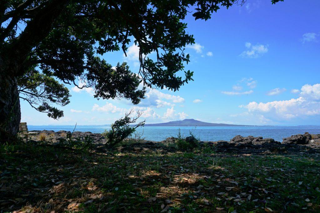 Ein schattiges Plätzchen am der Küste von Takapuna