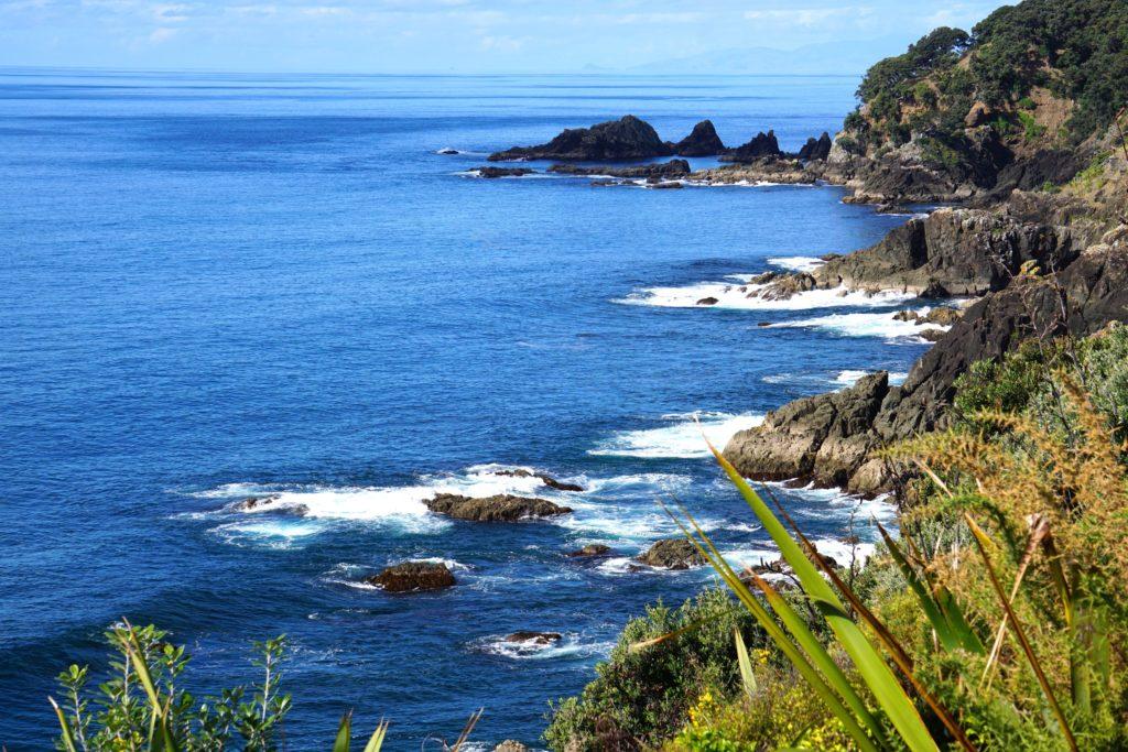 Cape Rodney