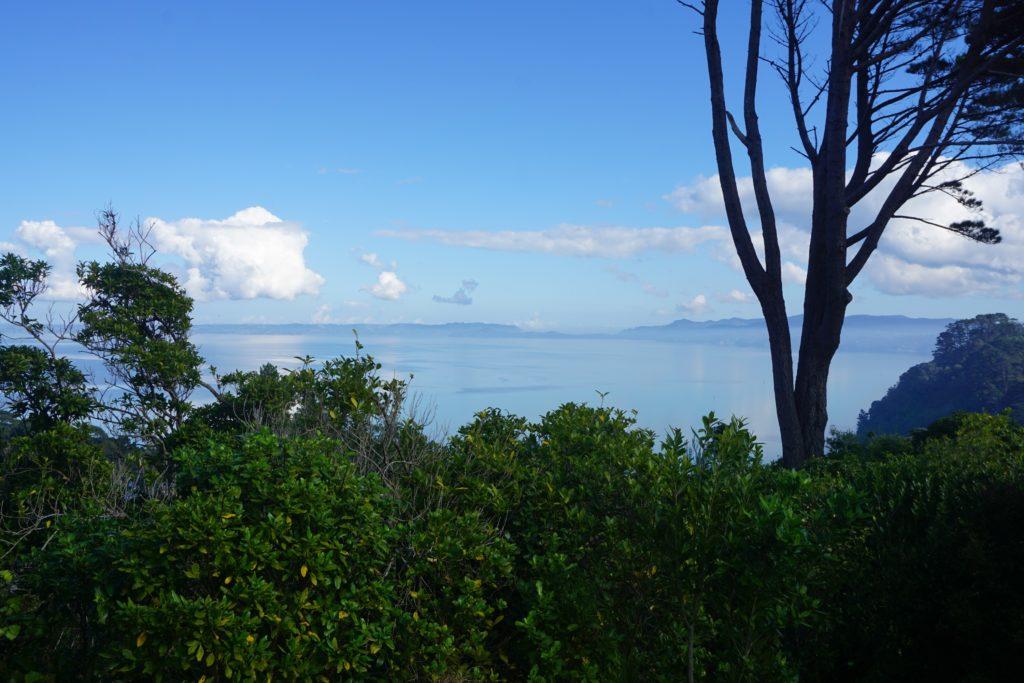 Waikōwhai Walkway: Blick vom Cape Horn Lookout