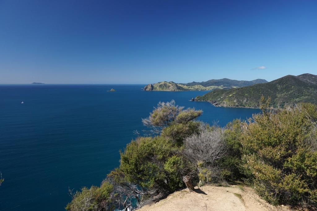 Der Aussichtspunkt auf dem Coromandel Coastal Walkway
