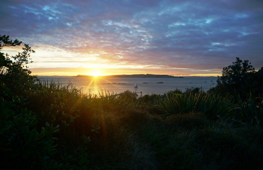 Anlegestelle im Sonnenuntergang mit Shakespear Regionalpark im Hintergrund